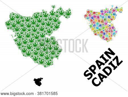 Vector Cannabis Mosaic And Solid Map Of Cadiz Province. Map Of Cadiz Province Vector Mosaic For Weed