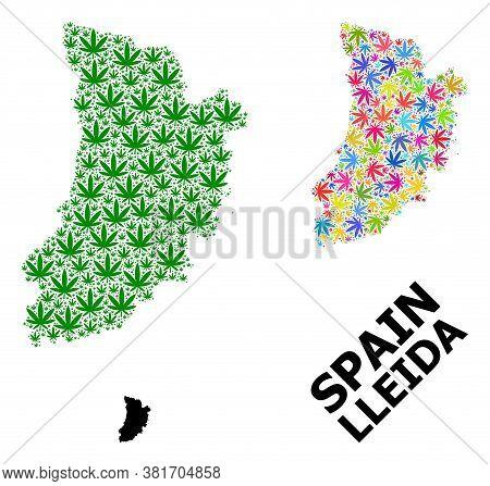 Vector Marijuana Mosaic And Solid Map Of Lleida Province. Map Of Lleida Province Vector Mosaic For D
