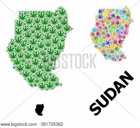 Vector Cannabis Mosaic And Solid Map Of Sudan. Map Of Sudan Vector Mosaic For Cannabis Legalize Camp