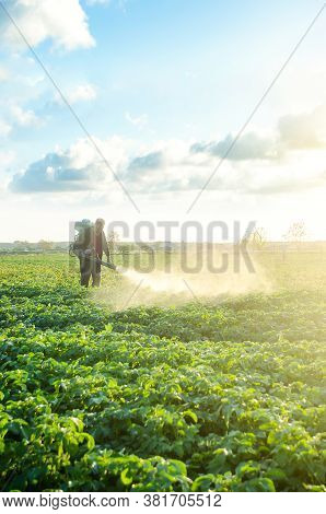 Farmer With A Mist Sprayer Blower Processes The Potato Plantation. Protection And Care. Use Of Indus