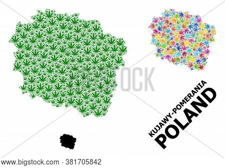 Vector Weed Mosaic And Solid Map Of Kujawy-pomerania Province. Map Of Kujawy-pomerania Province Vect