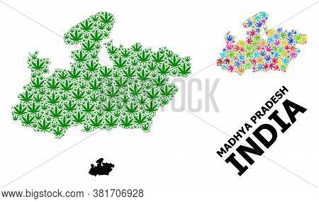 Vector Marijuana Mosaic And Solid Map Of Madhya Pradesh State. Map Of Madhya Pradesh State Vector Mo