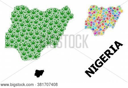 Vector Weed Mosaic And Solid Map Of Nigeria. Map Of Nigeria Vector Mosaic For Marijuana Legalize Cam