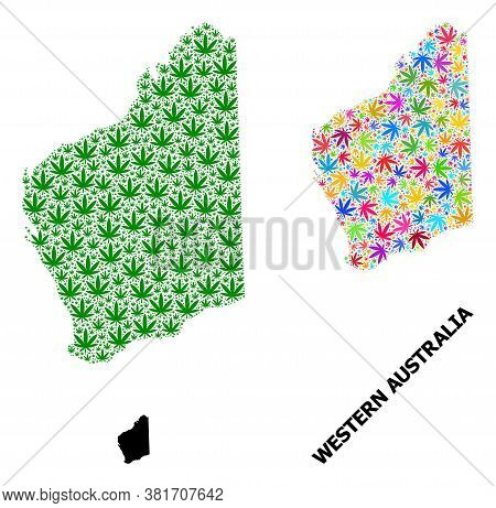 Vector Hemp Mosaic And Solid Map Of Western Australia. Map Of Western Australia Vector Mosaic For He