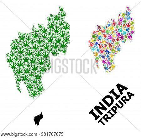 Vector Hemp Mosaic And Solid Map Of Tripura State. Map Of Tripura State Vector Mosaic For Hemp Legal