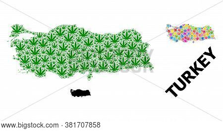 Vector Hemp Mosaic And Solid Map Of Turkey. Map Of Turkey Vector Mosaic For Hemp Legalize Campaign.
