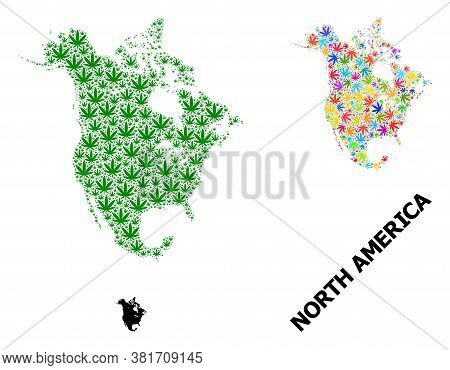 Vector Cannabis Mosaic And Solid Map Of North America. Map Of North America Vector Mosaic For Weed L