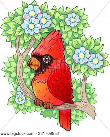 Cute Cartoon Red Cardinal Bird, Funny Illustration