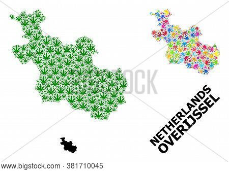 Vector Weed Mosaic And Solid Map Of Overijssel Province. Map Of Overijssel Province Vector Mosaic Fo