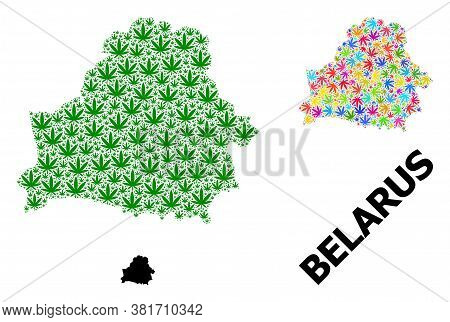Vector Weed Mosaic And Solid Map Of Belarus. Map Of Belarus Vector Mosaic For Cannabis Legalize Camp