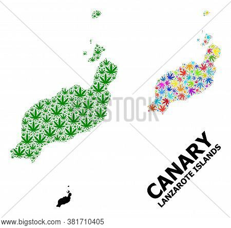 Vector Weed Mosaic And Solid Map Of Lanzarote Islands. Map Of Lanzarote Islands Vector Mosaic For We