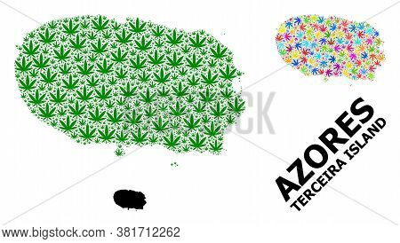 Vector Weed Mosaic And Solid Map Of Terceira Island. Map Of Terceira Island Vector Mosaic For Weed L