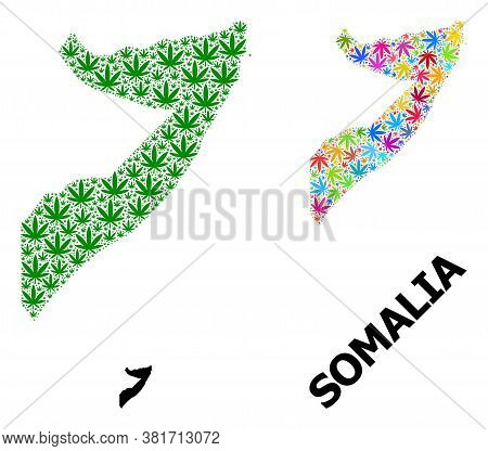 Vector Weed Mosaic And Solid Map Of Somalia. Map Of Somalia Vector Mosaic For Weed Legalize Campaign