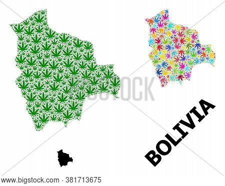 Vector Cannabis Mosaic And Solid Map Of Bolivia. Map Of Bolivia Vector Mosaic For Drug Legalize Camp