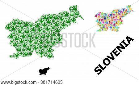 Vector Marijuana Mosaic And Solid Map Of Slovenia. Map Of Slovenia Vector Mosaic For Marijuana Legal