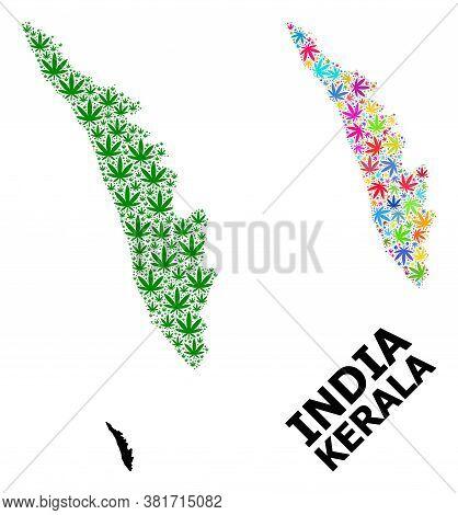 Vector Weed Mosaic And Solid Map Of Kerala State. Map Of Kerala State Vector Mosaic For Weed Legaliz