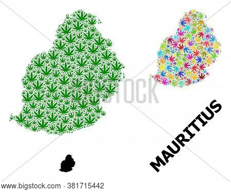 Vector Marijuana Mosaic And Solid Map Of Mauritius Island. Map Of Mauritius Island Vector Mosaic For