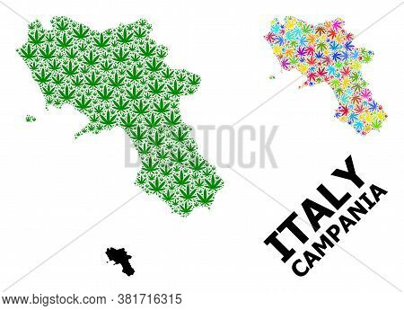 Vector Marijuana Mosaic And Solid Map Of Campania Region. Map Of Campania Region Vector Mosaic For W