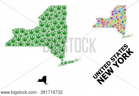 Vector Cannabis Mosaic And Solid Map Of New York State. Map Of New York State Vector Mosaic For Cann