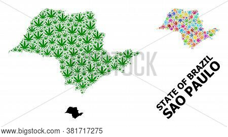 Vector Weed Mosaic And Solid Map Of Sao Paulo State. Map Of Sao Paulo State Vector Mosaic For Mariju