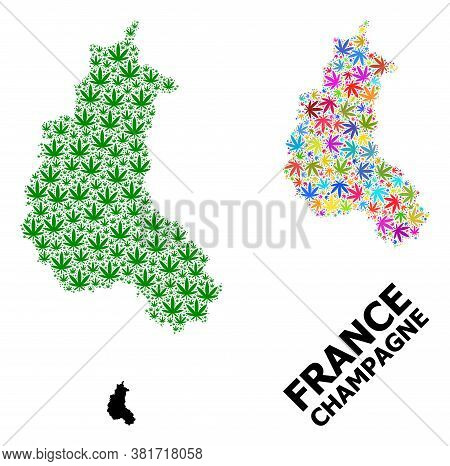 Vector Hemp Mosaic And Solid Map Of Champagne Province. Map Of Champagne Province Vector Mosaic For