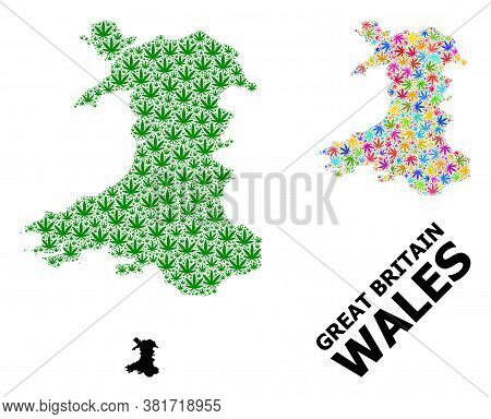 Vector Weed Mosaic And Solid Map Of Wales. Map Of Wales Vector Mosaic For Weed Legalize Campaign. Ma