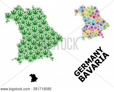 Vector Marijuana Mosaic And Solid Map Of Bavaria State. Map Of Bavaria State Vector Mosaic For Marij