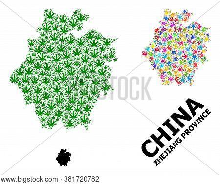 Vector Weed Mosaic And Solid Map Of Zhejiang Province. Map Of Zhejiang Province Vector Mosaic For We