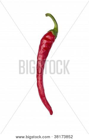 red cayenna pepper isolated on white