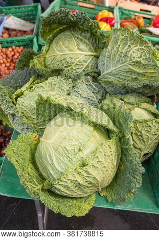 Cabbage For Sale At A Farmers Market. Head Of Cabbage.