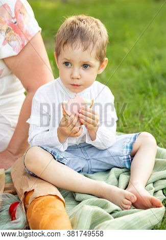 Funny Boy Having Picnic In Nature, Outside. Little Boy Eating A Sandwich At A Cookout. Child Spend T