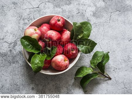Fresh Organic Ripe Apples In A Bowl On A Grey Background, Top View. Copy Space