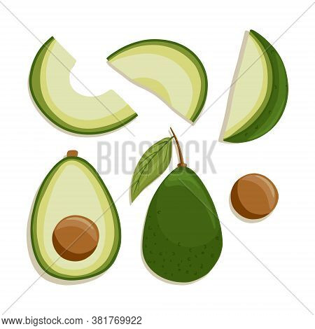Vector Avocado Collection In Cartoon Style. Bright Avocado Vegetables Isolated On White Background.