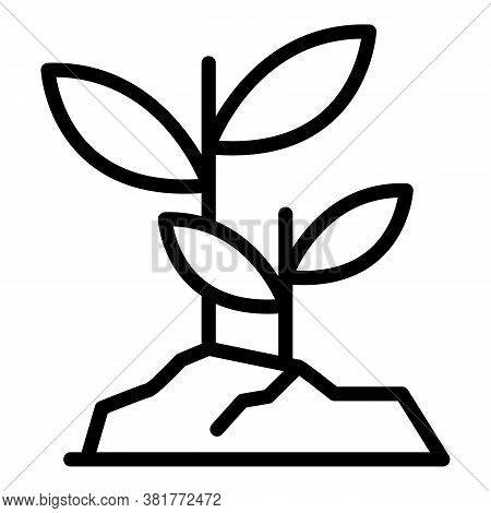 Grow Seeds Icon. Outline Grow Seeds Vector Icon For Web Design Isolated On White Background