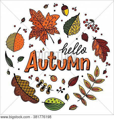 Autumn Season Banner. Hello Autumn Background With Fall Leaves In A Circle. Foliage Of Yellow, Orang