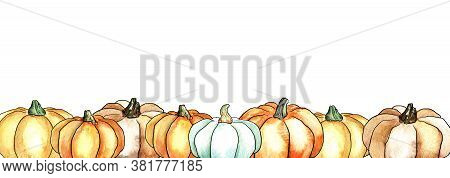 Autumn Colored Pumpkins Border Design Template For Banners And Thanksgiving Day Backgrounds. A Bunch