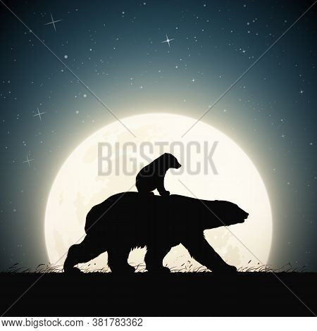 Polar Bears Family Walking In Grass On Moonlight Night. Animal Baby Silhouette On Back Of Mother. Fu