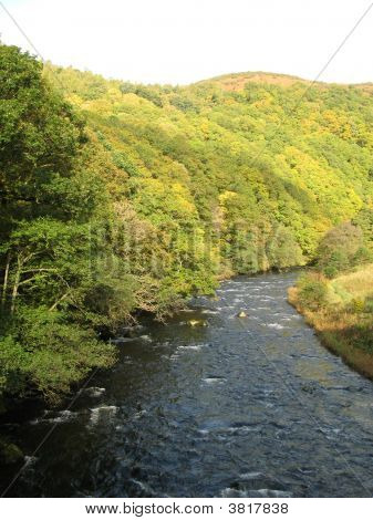 River Greta With Tree Lined Bank