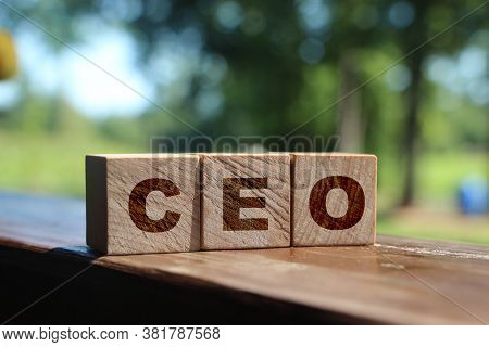 Ceo Letters On Wooden Blocks. Chief Executive Officer. Business Boss Concept.