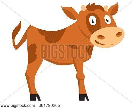 Standing Cute Calf. Farm Animal In Cartoon Style.