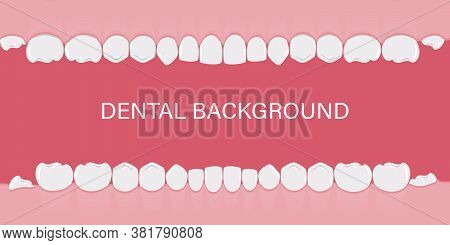 Background With Teeth In A Row. Human Teeth In The Gum. Background For Dentists, Orthodontists. Temp