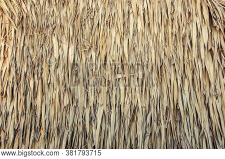 Hay Stack From Dry Grass And Straw Or Thatch Texture Background.