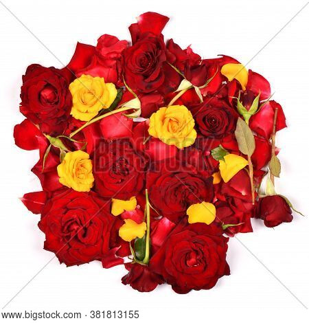Bouquet Beautiful Red And Yellow Rose Flower Isolated On White Background. High Resolution Photo. Fu