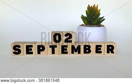 2 September .september 2 On Wooden Cubes On A White Background.pot With A Flower .calendar For Septe