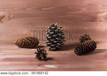 Pine Cones On Wooden Background. Abstract Composition. Fir Cones. Pine Cones