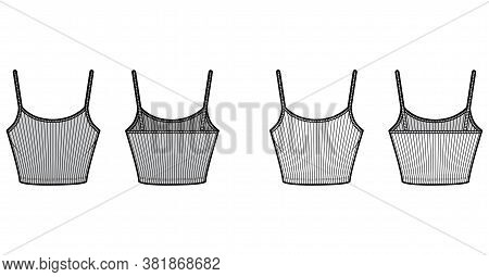 Ribbed Cropped Camisole Technical Fashion Illustration With Scoop Neck, Fitted Knit Body, Waist Leng