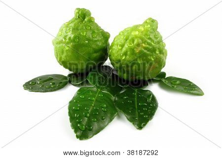 bergamot and leaves