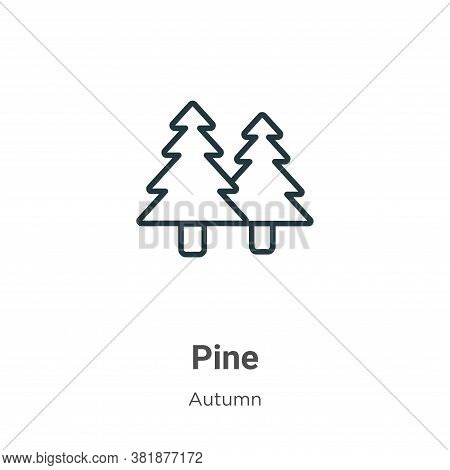 Pine icon isolated on white background from autumn collection. Pine icon trendy and modern Pine symb