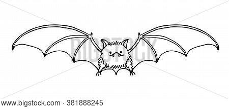 Cute Funny Bat, Bloodsucker, Symbol Of Vampire, Midnight & Halloween Holiday, Pet, Vector Illustrati