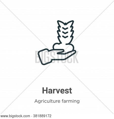 Harvest icon isolated on white background from farming and gardening collection. Harvest icon trendy